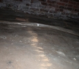 A line of powdery sawdust in the crawl space?